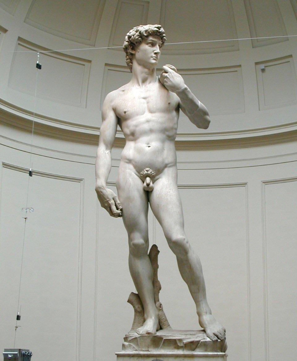 Michelangelo Irving Stone