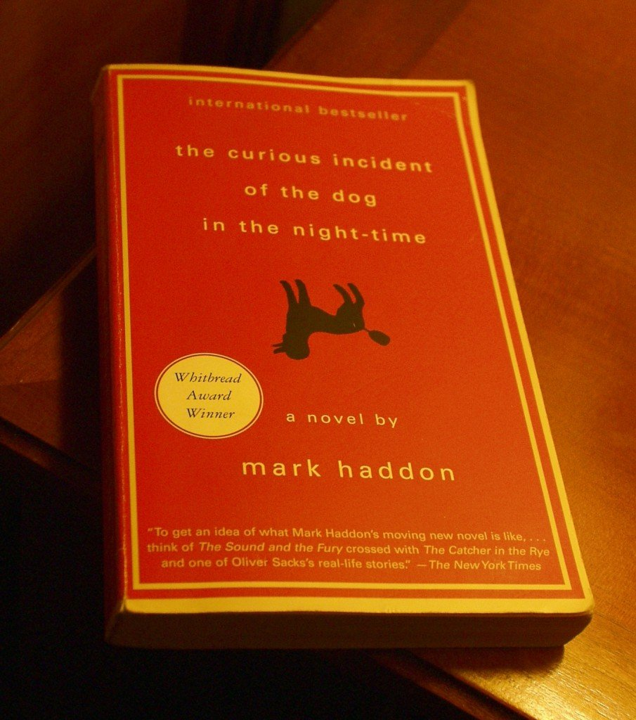 the curious incident of the dog in the nighttime by mark haddon essay