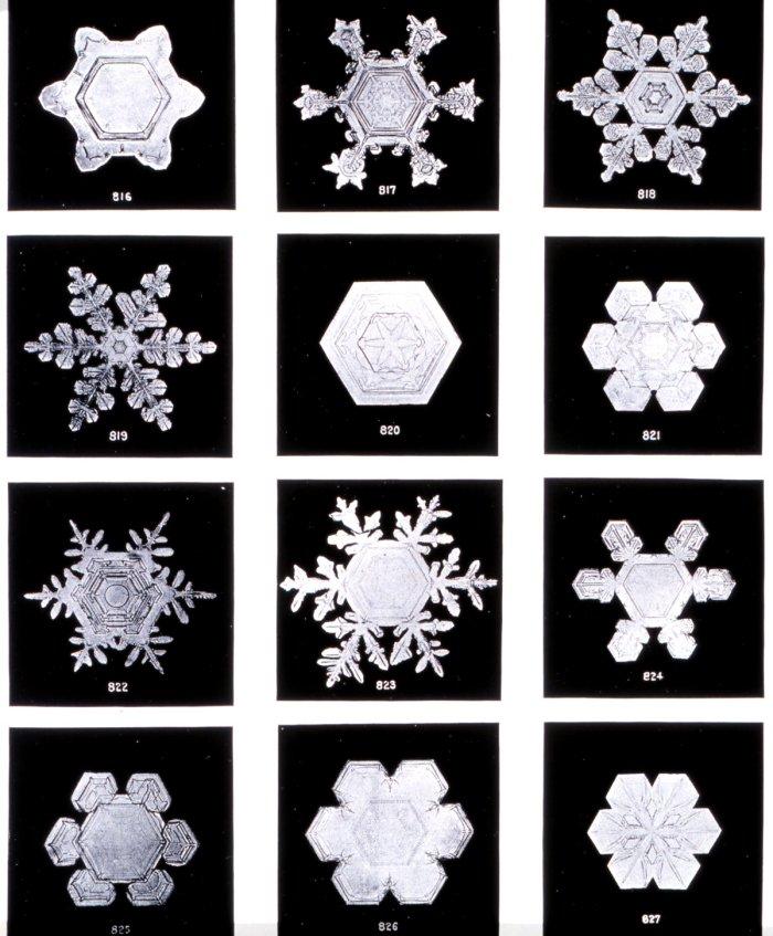 noaa snowflakes
