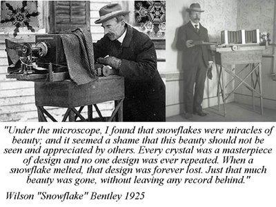 wilson snowflake bentley