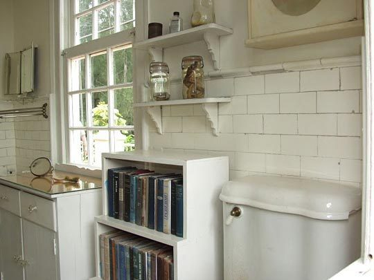 banyoda kitaplık