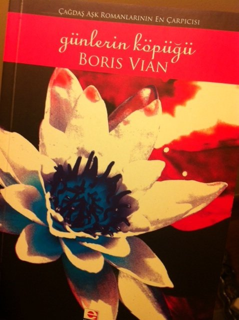 Boris Vian - Günlerin Köpüğü