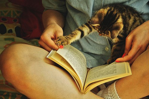 daha çok kitap okumak
