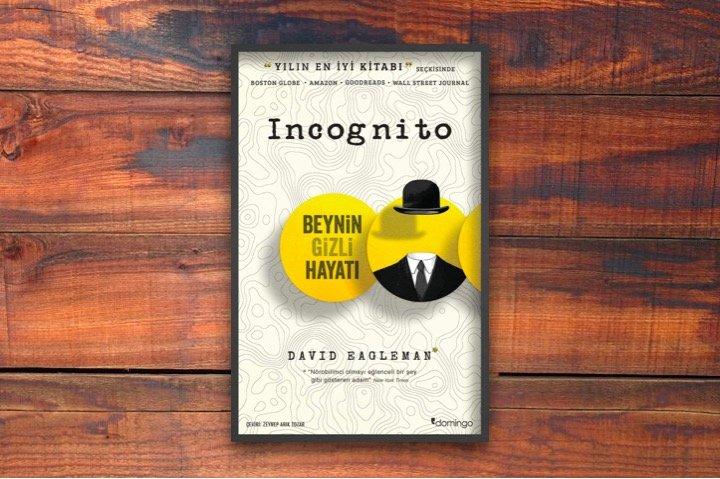 Incognito - Beynin Gizli Hayatı, David Eagleman