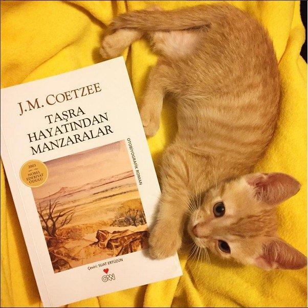 Taşra Hayatından Manzaralar - J.M. Coetzee