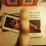 Aşktan ve Gölgeden – Isabel Allende