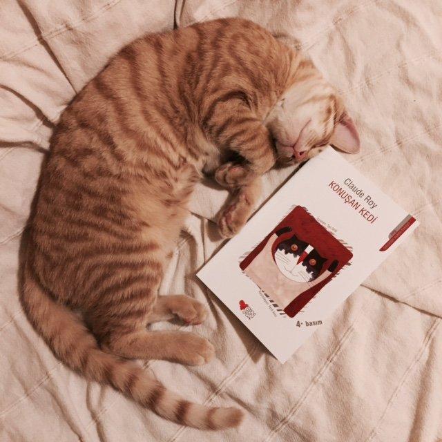 Konuşan Kedi - Claude Roy