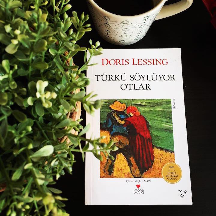 Türkü Söylüyor Otlar – Doris Lessing