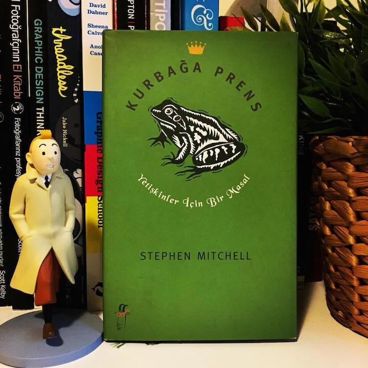 Kurbağa Prens, Yetişkinler İçin Bir Masal – Stephen Mitchell