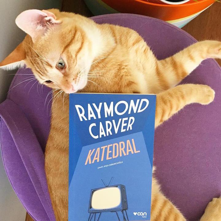 Katedral – Raymond Carver
