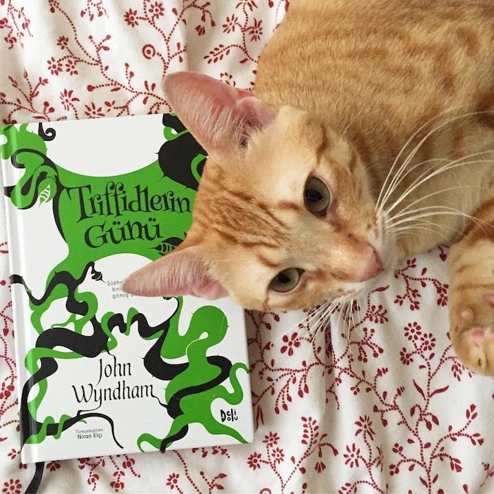Triffidlerin Günü – John Wyndham