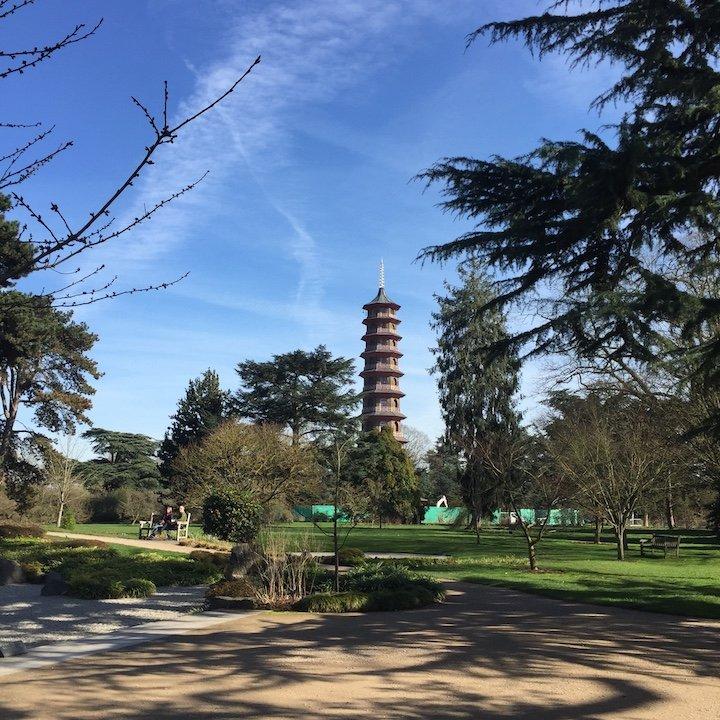 royal botanical gardens kew