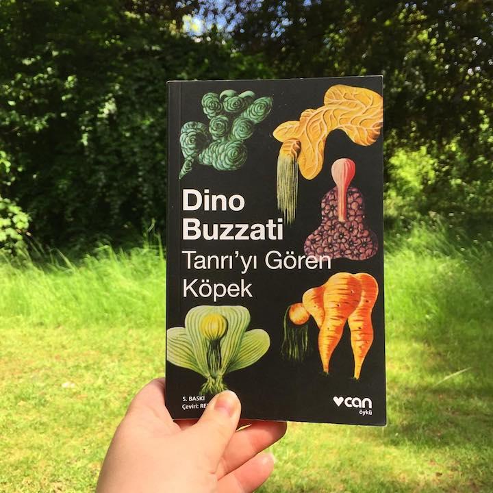 Tanrı'yı Gören Köpek - Dino Buzzati