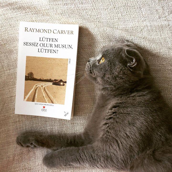 Lütfen Sessiz Olur Musun, Lütfen? – Raymond Carver