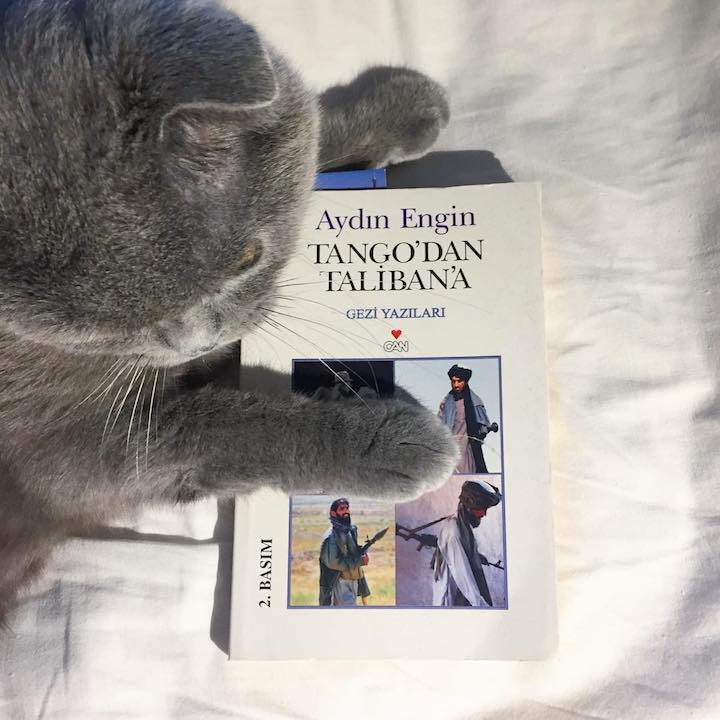 Tango'dan Taliban'a Gezi Yazıları – Aydın Engin