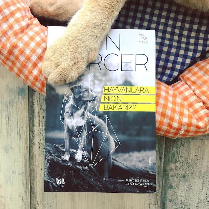 Hayvanlara Niçin Bakarız? – John Berger