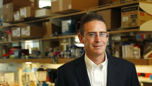 Mikroplarınızla Tanışın - Rob Knight, Brendan Buhler