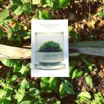 Walden, Ormanda Yaşam – Henry David Thoreau