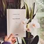 Yaza Yolculuk – Tomris Uyar