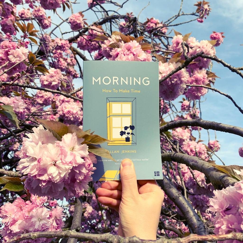 Morning – Allan Jenkins