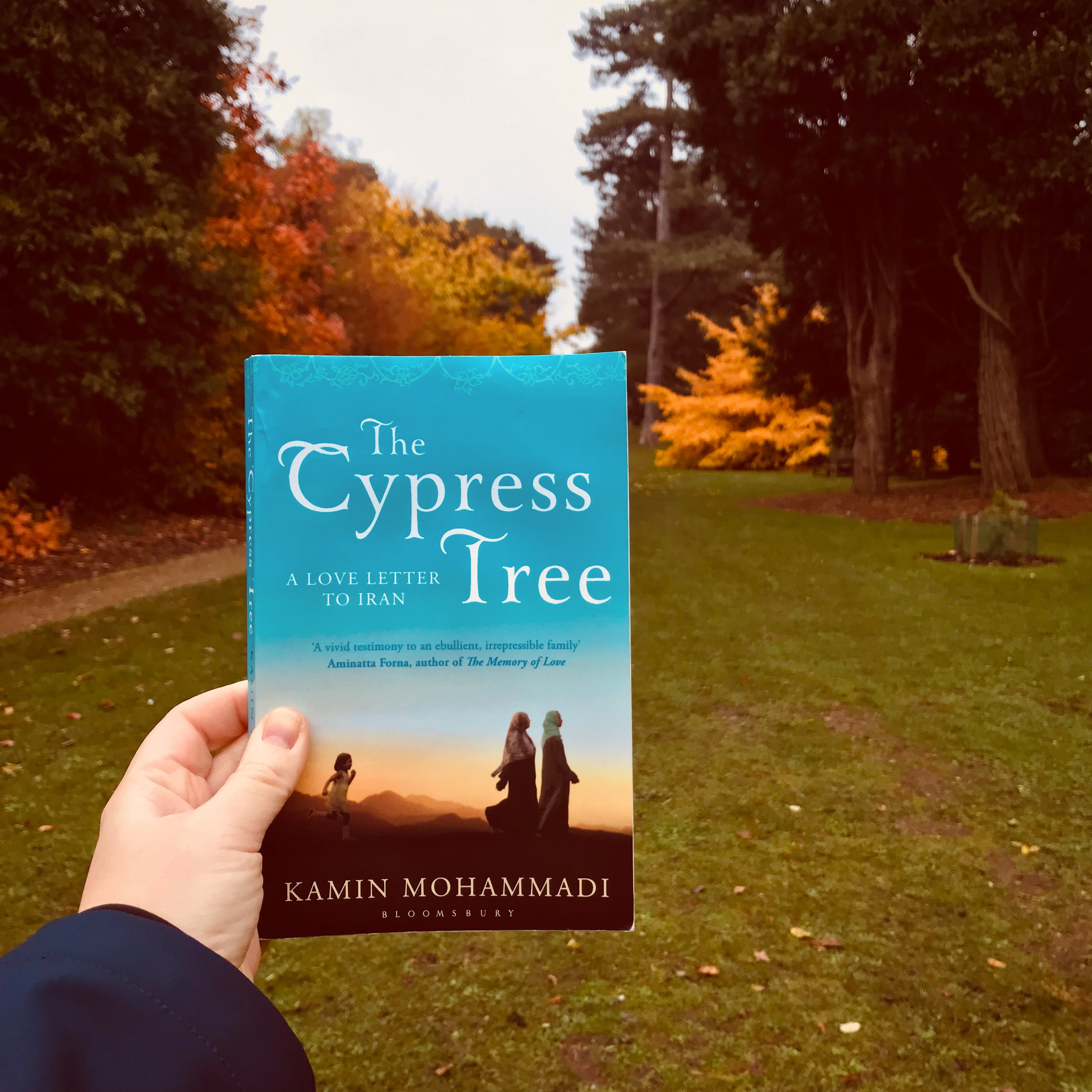 The Cypress Tree - Kamin Mohammadi