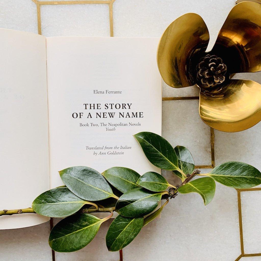 Yeni Soyadının Hikayesi – Elena Ferrante