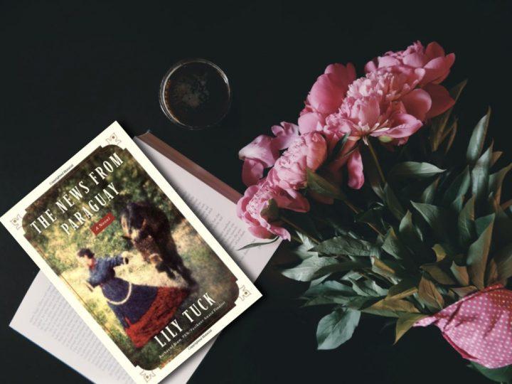 Hüzünlü Bir Aşk Şarkısıydı Paraguay - Lily Tuck