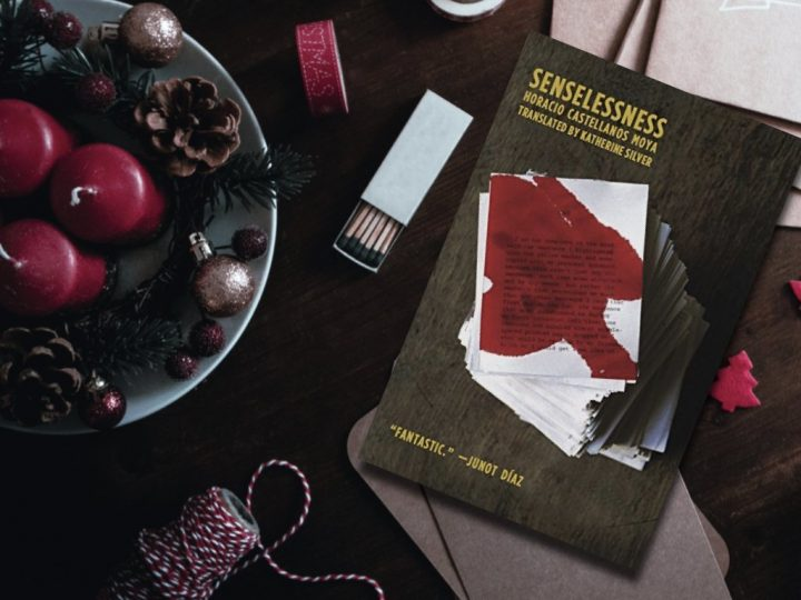 Senselessness - Horacio Castellanos Moya