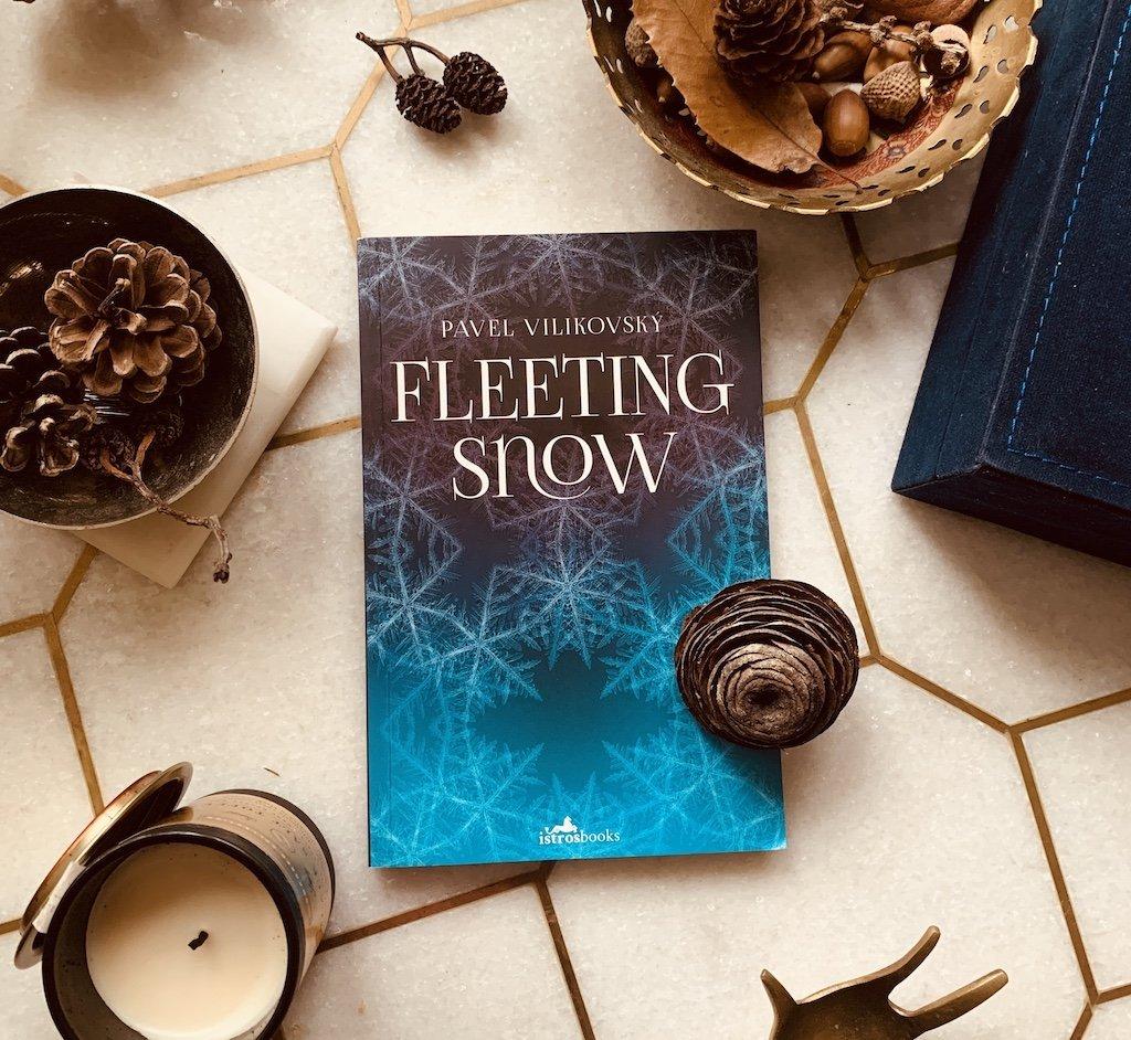 Fleeting Snow - Pavel Vilikovsky